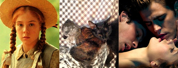 Precocious Orphans, Kittens, and Drunk Vampires: The Best of Jenny